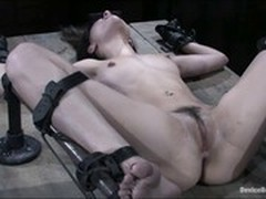 BDSM, torture, Wall Dildo, Forced Anal Porn, Fetish, Cum in Throat, Humiliation Gangbang, Kinky Family, Masturbation Hd, Perfect Body Anal, Sex Slaves, dildo, Vibrator Masturbation, Watching