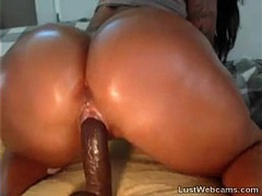 Big Booty, pawg, Huge Tits Movies, Big Booty Fucking, Fucked Public Bus, chunky, Buttfuck, rides Cock, Amateur Dildo Orgasm, Latina Homemade, Big Ass Latina Teen, Latino, Amateur Riding Homemade, softcore, tattoos, Huge Natural Tits, vibrator, Babes Butt Toying, Perfect Ass, Perfect Body Amateur, Solo Babe